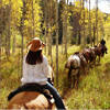 Bearcat Stables - Specializing in horseback rides of groups of 8 or less, for one day or up to 4 days. Hunting camps, pack trips, weddings, sleigh & carriage rides, all in a stunning location!