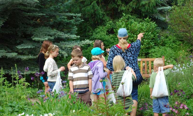 Kids Program at Vail Nature Center