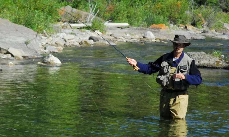 Colorado river colorado fly fishing camping boating for Colorado river fly fishing