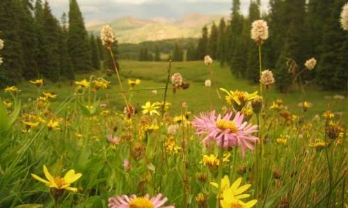 Vail Colorado Tours